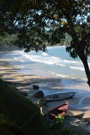 Trinidad tides.