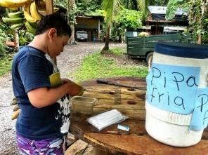 My scrupulous coconut dealer